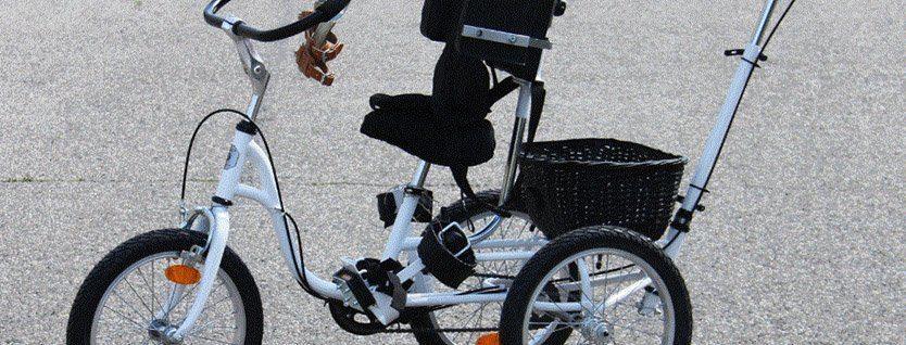 Generis Bicykle